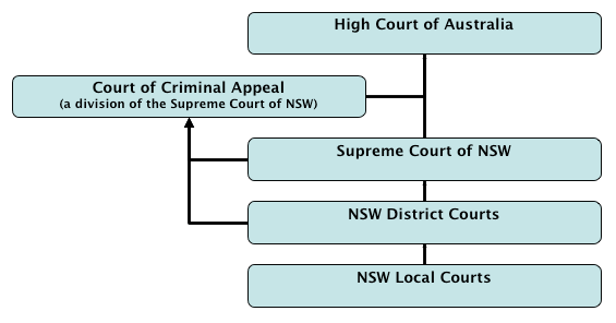 The court hierarchy